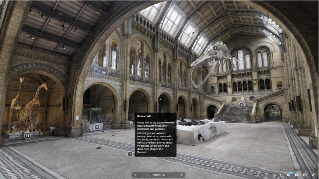 Khu vực sảnh của Bảo tàng Lịch sử Tự Nhiên tại London